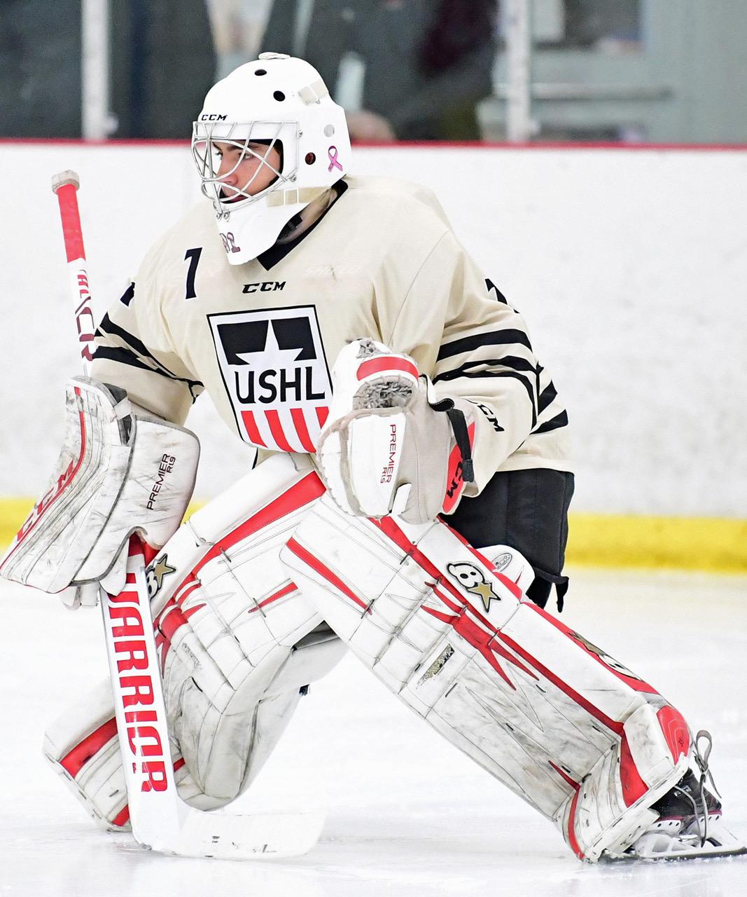 1 Skill Hockey Goalies Need To Learn Goalie Training Pro